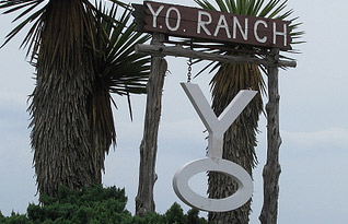The Y.O. Ranch: A Texas Ranching Tradition & Award-Winning Steakhouse